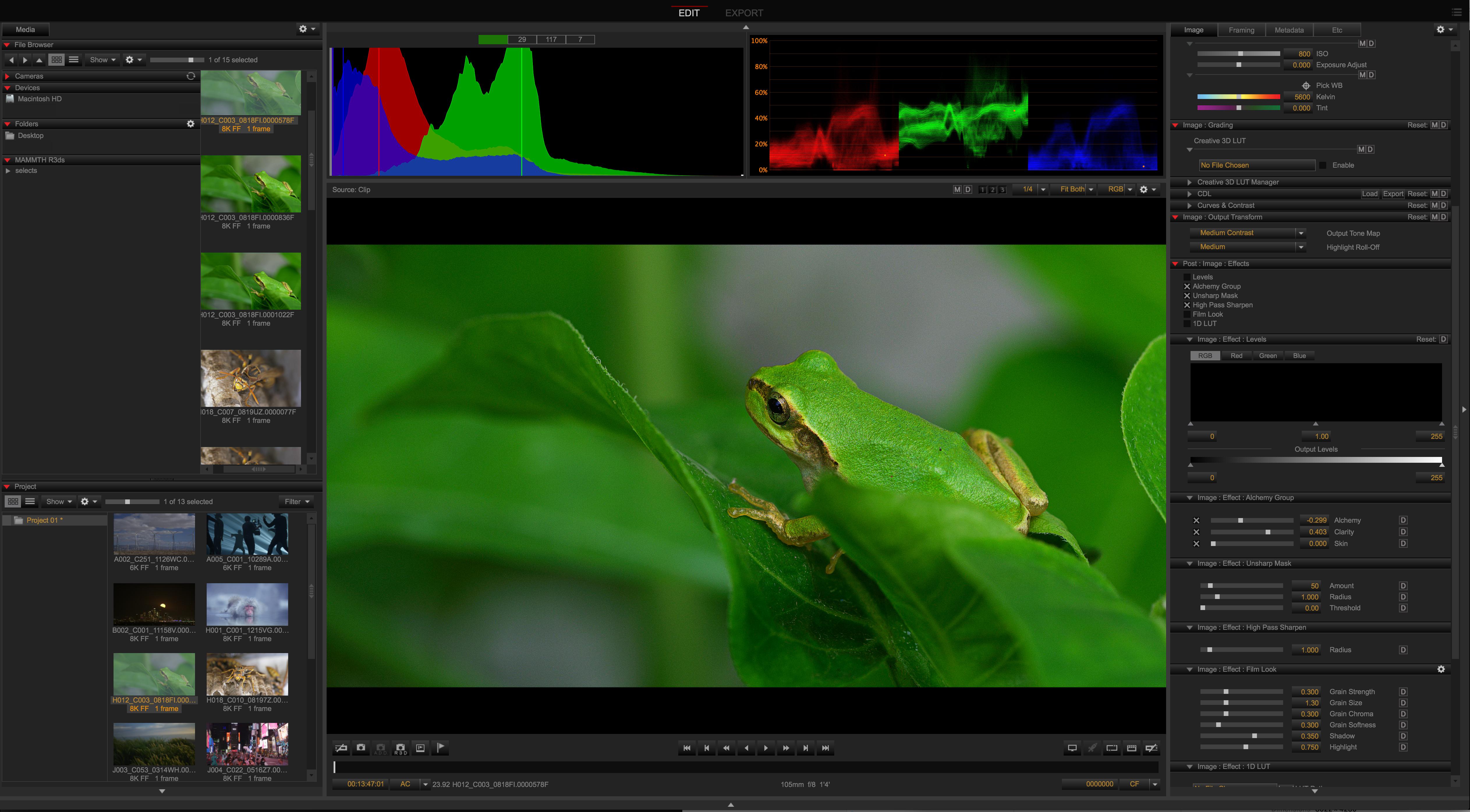 RED | EPIC-W | 8K Professional Digital Cinema Camera
